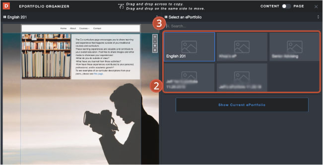 6organizer_copy.jpg